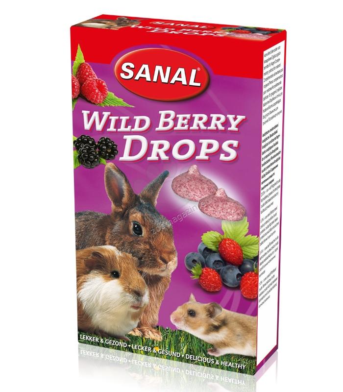 Sanal Rodent Wild Berry Drops - деликатесно лакомство с горски плодове  45 гр.