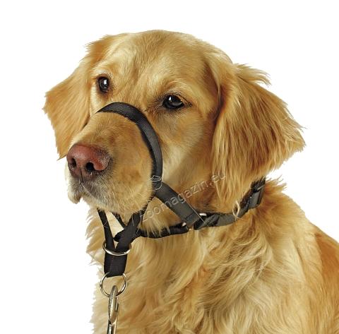 Kerbl Harness for Training and Education Maxi Coach - тренировъчен повод, за кучета с обиколка на муцуната до 24-32 см.