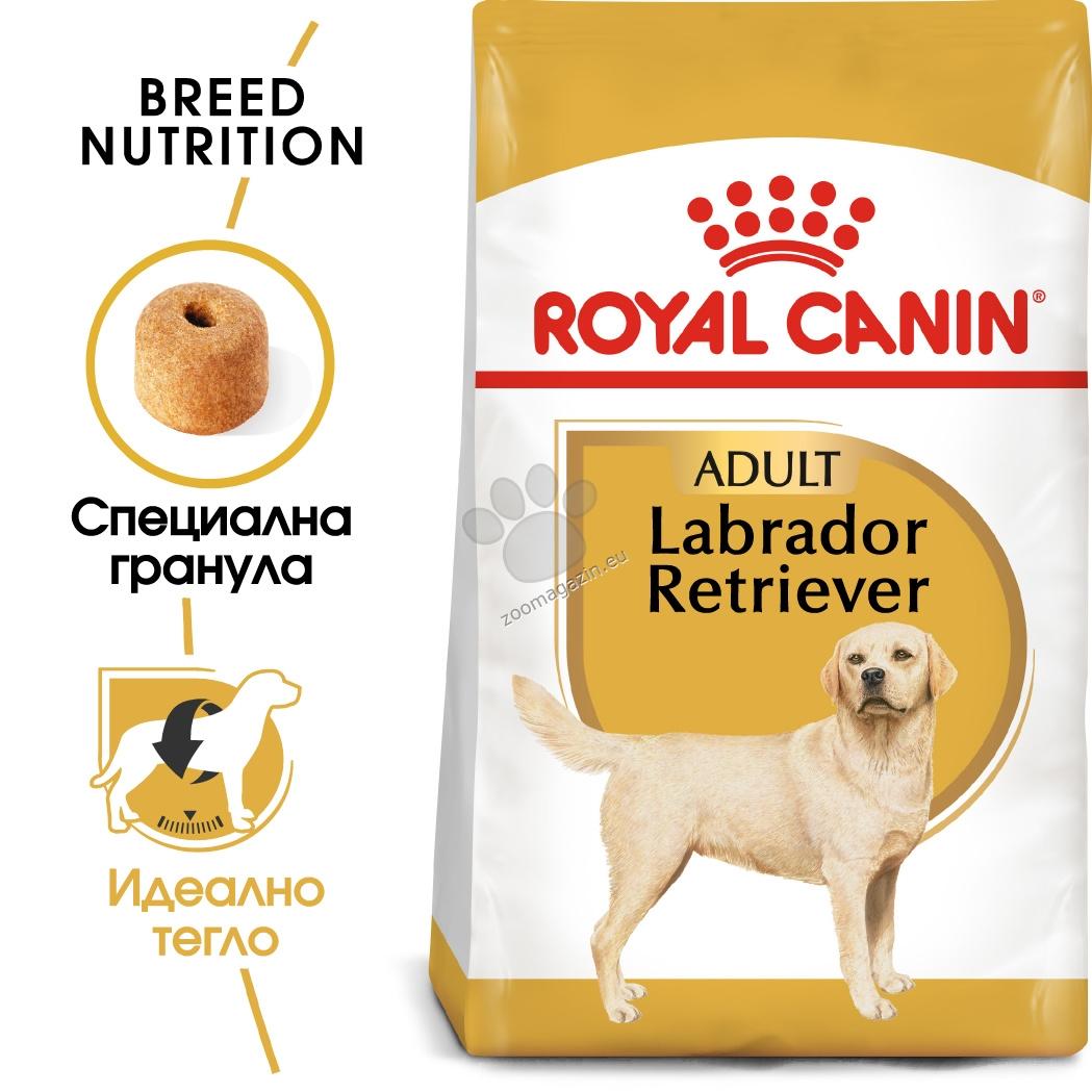 Royal Canin Labrador Retriever Adult - за кучета порода лабрадор на възраст над 15 месеца  12 кг.