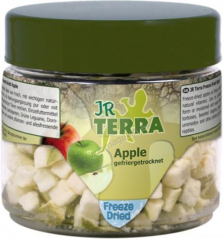 JR Farm Terra Freeze Dried Apple - ябълки, храна за сухоземни костенурки, брадати гущери, зелени игуани, бодливи гущери и др. всеядни и растителноядни влечуги 15 грaма