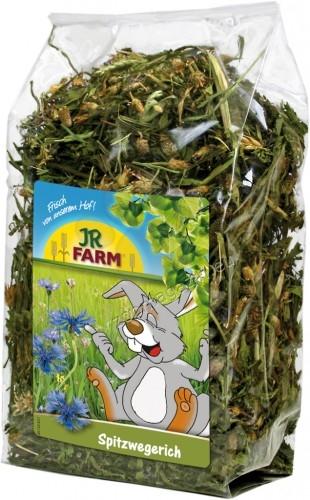 JR Farm Ribwort - живовлек за гризачи, здравословна храна за всеки ден 100 гр.