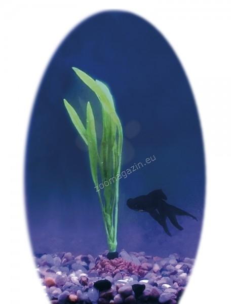 Nobby Bolivian Sword - изкуствено силиконово растение 11.5 см.