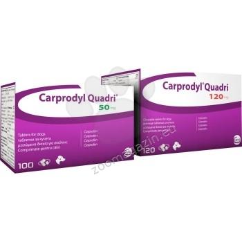 Ceva Caprodyl Quadri 120 мг. - намалява възпалението и болката при костно-мускулни смущения и дегенеративни ставни заболявания 120 таблетки