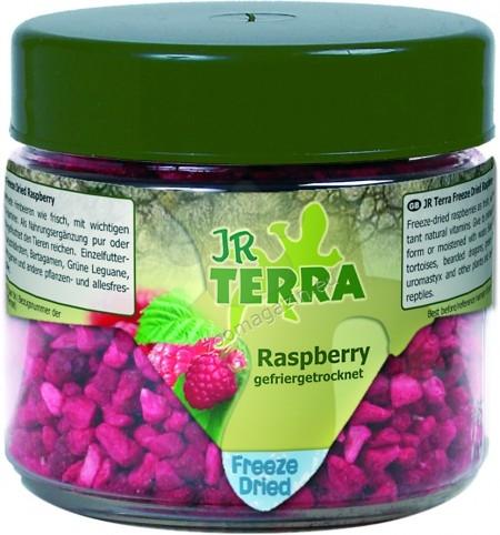 JR Farm Terra Freeze Dried Raspberry - малини,  храна за сухоземни костенурки, брадати гущери, зелени игуани, бодливи гущери и други всеядни и растителноядни влечуги 15 гр.