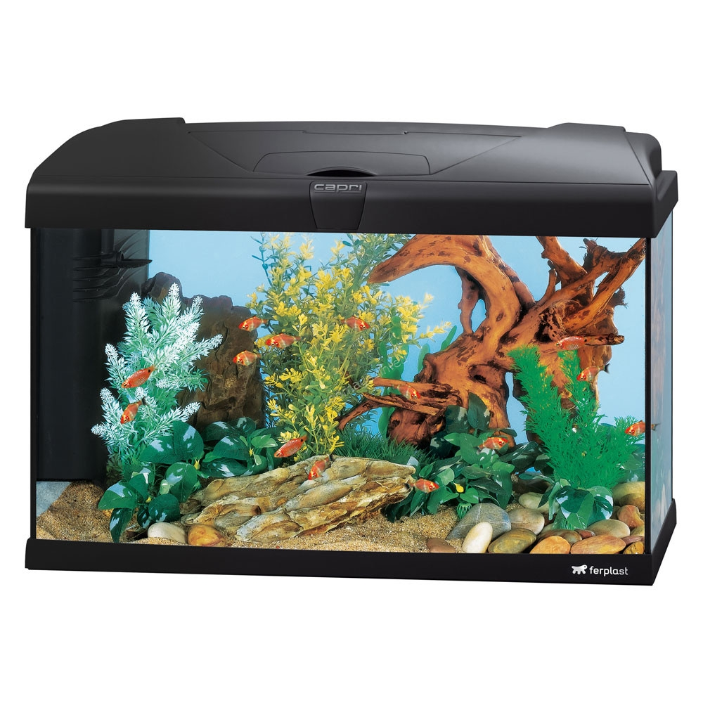 Ferplast - Aquarium Capri 60 LED - аквариум с пълно оборудване 60 л. черен