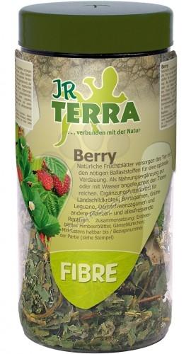 JR Farm Berry - листа от ягоди, за сухоземни костенурки, брадати гущери, зелени игуани, бодливи гущери 25 грама