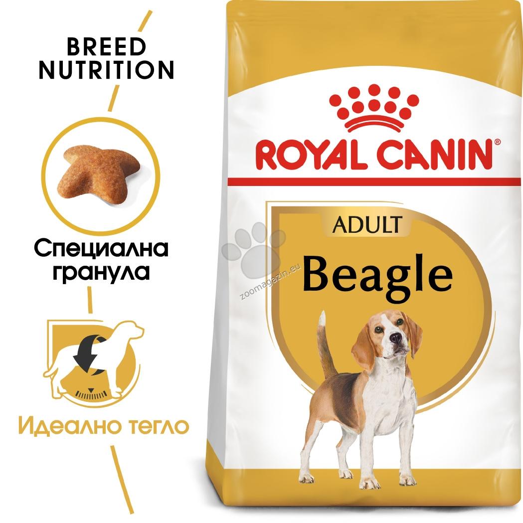 Royal Canin Beagle Adult - за кучета порода бигъл на възраст над 12 месеца 3 кг.