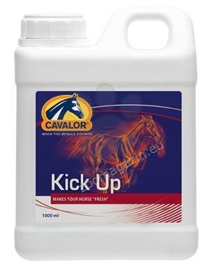 Cavalor Kick Up - при състояние на апатия без видима причина, унилост или липса на кондиция 1 л.