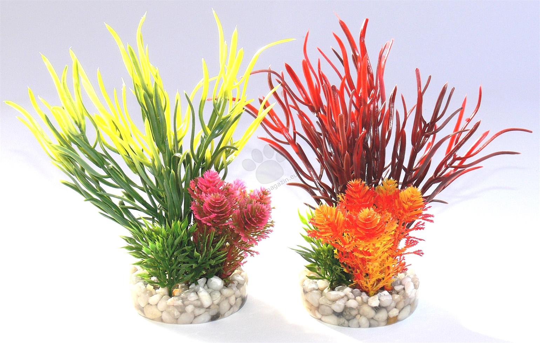 Sydeco Sea Grass Bouquet 12 см., / жълто, червено /