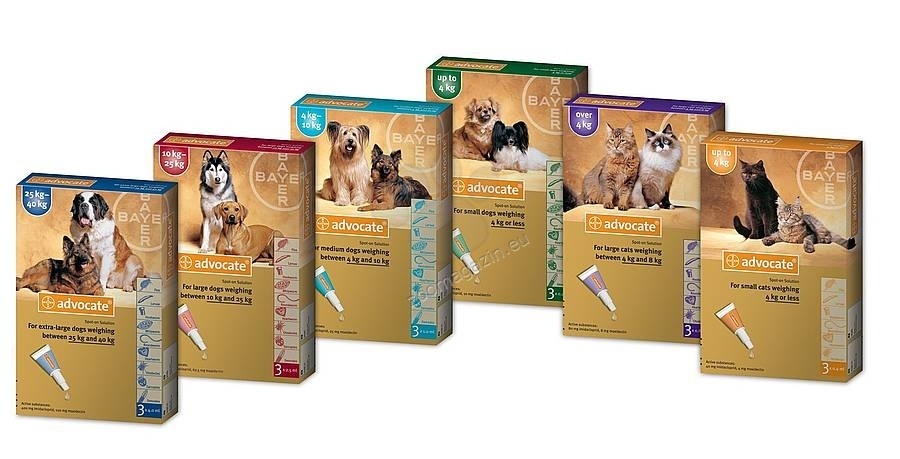 Bayer Advocate Cat - комбиниран препарат срещу външни и вътрешни паразити, за котки до 4 килограма / кутия с три броя пипети /