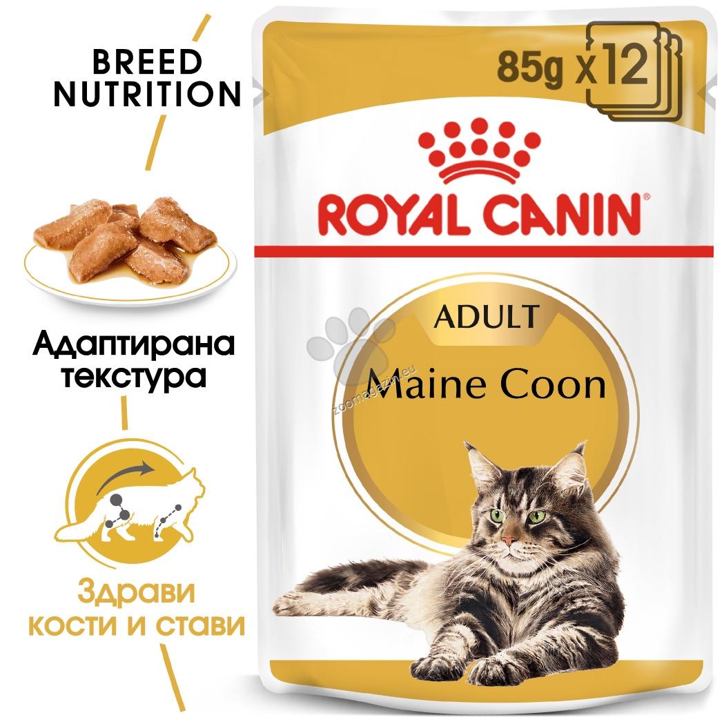 Royal Canin Maine Coon - пауч за котки порода мейн куун 85 гр.