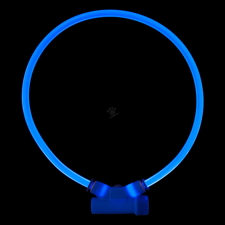 Red Dingo Lumitube Illuminated Dog Safety Collar Bright Blue - светещ LED нашийник 15 - 80 см.