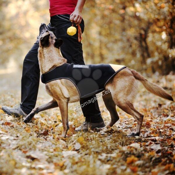 Julius K9 - Неопреново яке за куче дължина 40 см., за кучета с гръдна обиколка 51-64 см.