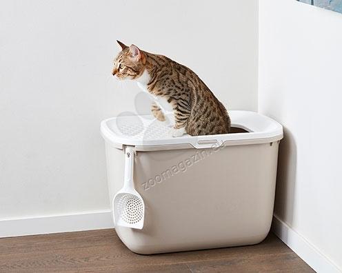 cat friendly furniture polish