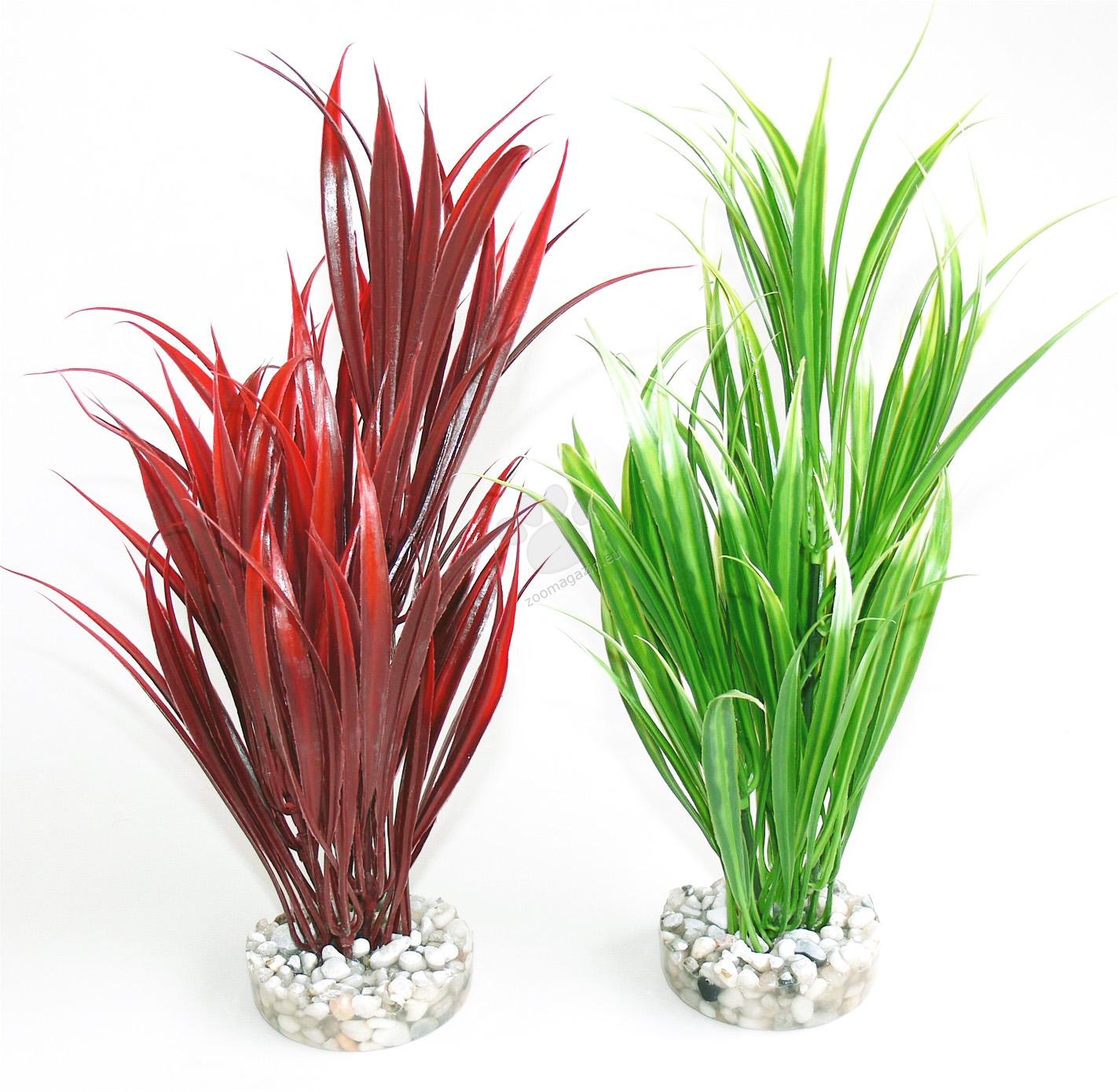 Sydeco Sword Plant 25 см. / зелено, червено /