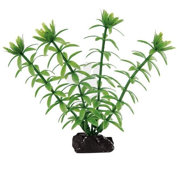 Ferplast - blu9055 - пластмасово растение 3,5 / 2 / 10 cm.