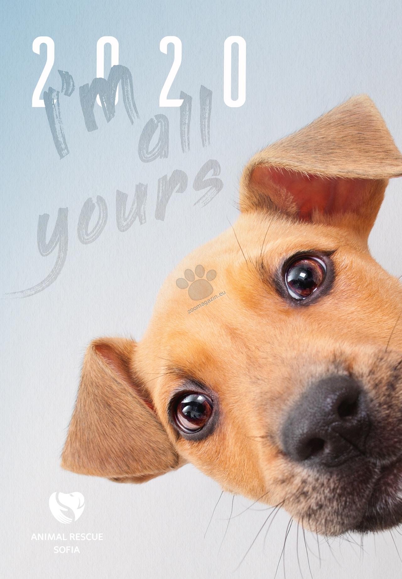 Animal Rescue - дарителски календар за 2020 година