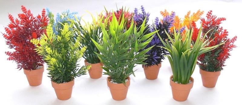 Sydeco Aquaplant Small in pot 18 см. / зелено, синьо, червено /