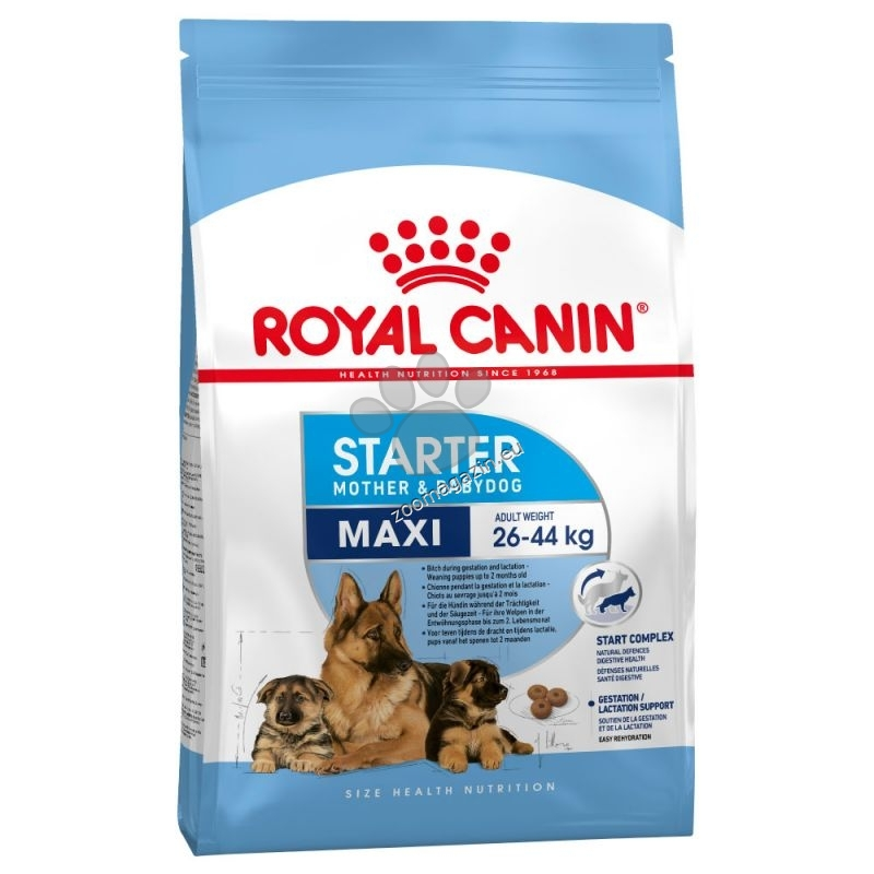 Royal Canin Maxi Starter - за кучки от края на бременността и по време на кърменето и отбити кученца до 2 месеца  4 кг.