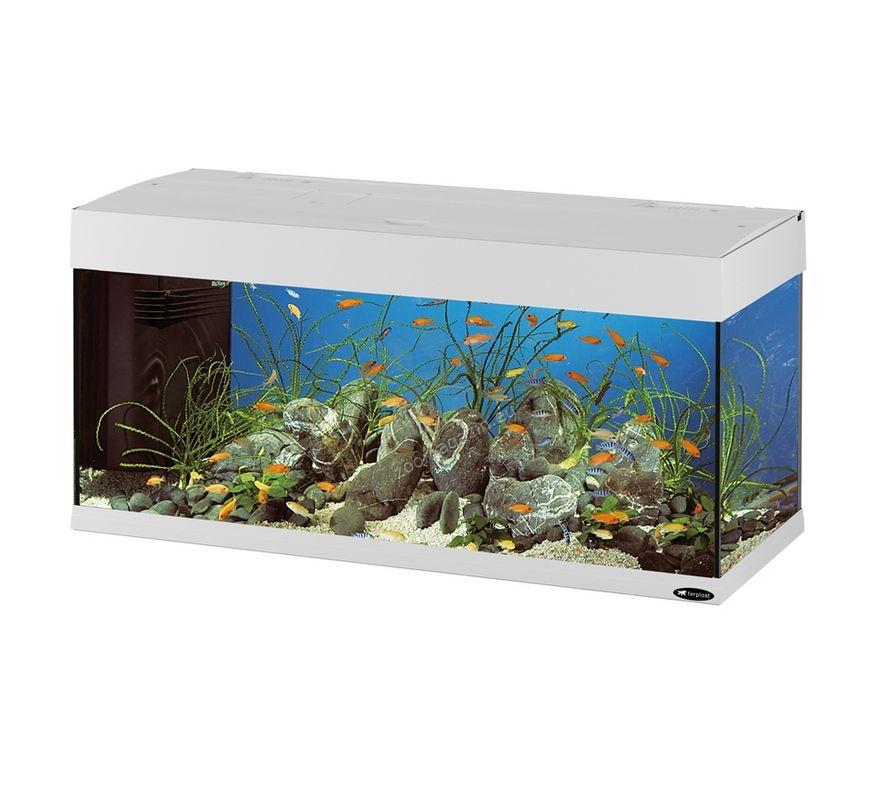 ferplast dubai 100 white fully equipped aquarium 190. Black Bedroom Furniture Sets. Home Design Ideas