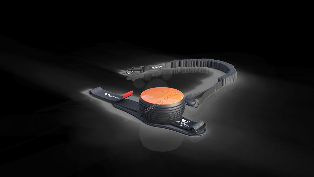 Lishinu Dog Leash Orange Big -αυτόματος οδήγος με