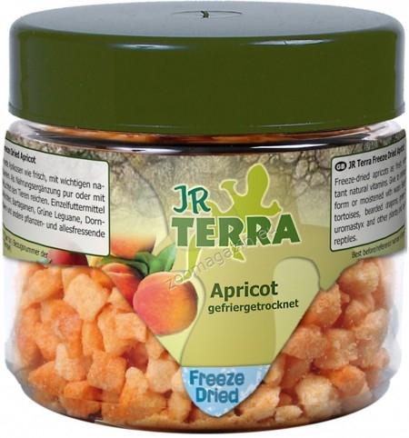 JR Farm Terra Freeze Dried Apricot - сушени кайсии, индивидуална храна за сухоземни костенурки, брадати гущери, зелени игуани, бодливи гущери и други всеядни и растителноядни влечуги 20 гр