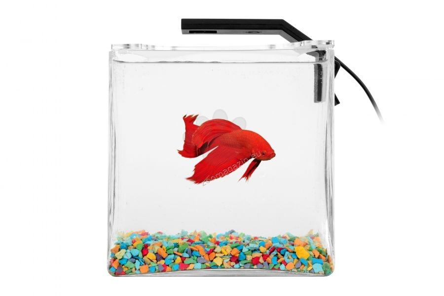 Collar Aquarium Set Betta Set - аквариум за отглеждане на бети, 14/14/14 см, 2,7 литра