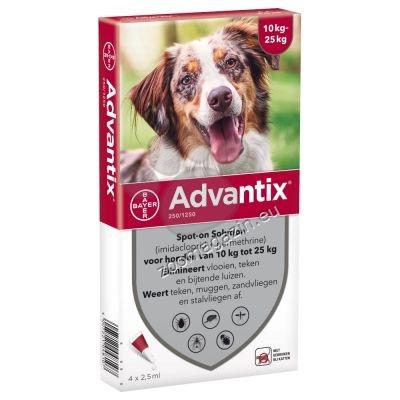 Bayer Advantix Spot On-за кучета от 10 до 25 кг. / кутия с четири броя пипети /