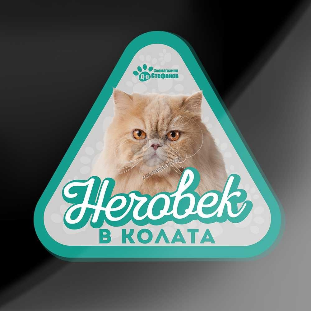 Персийска Котка - стикер за кола