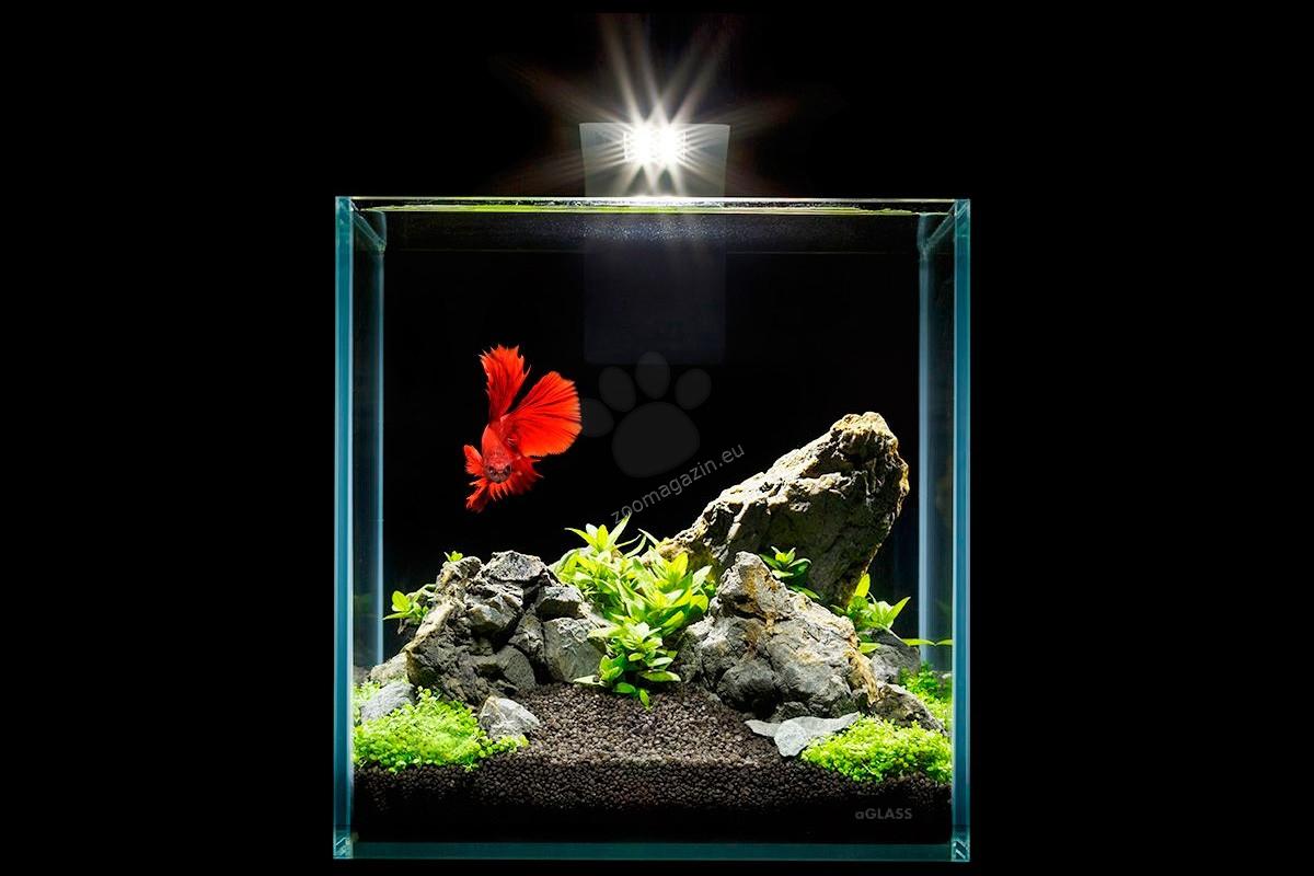 Collar Aquarium Set Nano Set - аквариум с пълно оборудване, 22/22/22 см, 10 литра