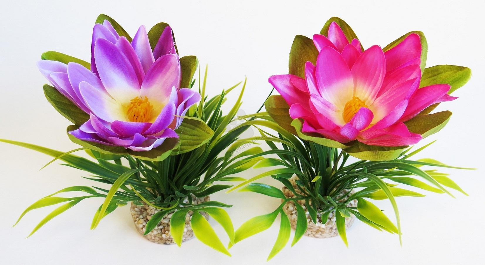 Sydeco Lotus Flower 18 см. / червено, лилаво /