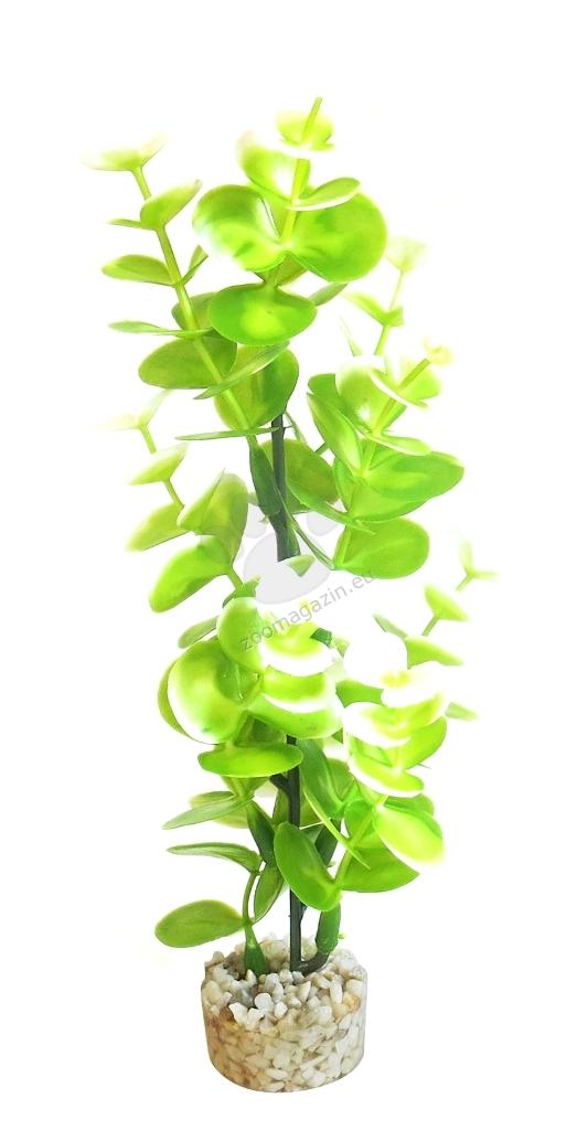 Sydeco BIO Aqua Eucalyptus 23 см.