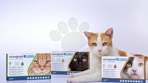 Stronghold Plus 60 mg. - за котки с тегло над 5 кг. / 3 пипети /