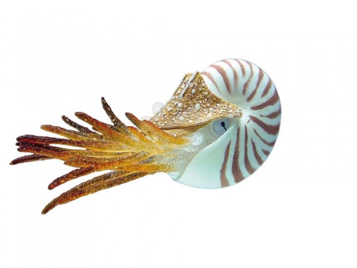Nobby Fantasy Aqua Decor Nautilus - декорация за аквариум 10 см.